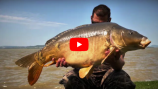Carp Time 2018/2 - Balaton 10 Trailer